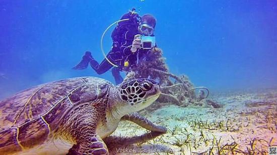 Barakuda Diving Center