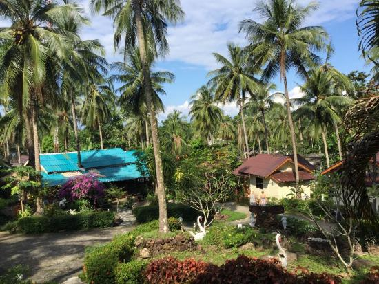 Janinas Resort : Lovely view from bungalow number five