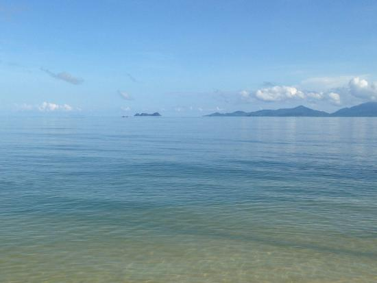 Bang Po Beach : be careful if you swim over the reef...my husband stood on a sea urchin...trip to hospital!
