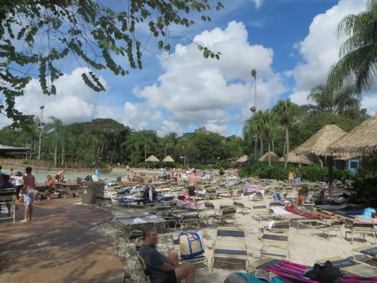Map & Directions - Picture of Disney\'s Typhoon Lagoon Water Park ...