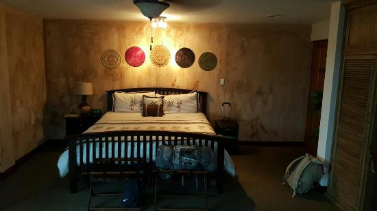 Hotel Buena Vista: IMG-20151103-WA0017_large.jpg