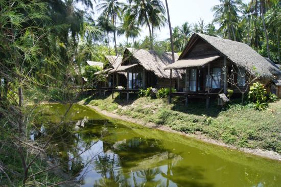 CoCo Cottage Koh Ngai: House in front area (be aware of mosquito's)