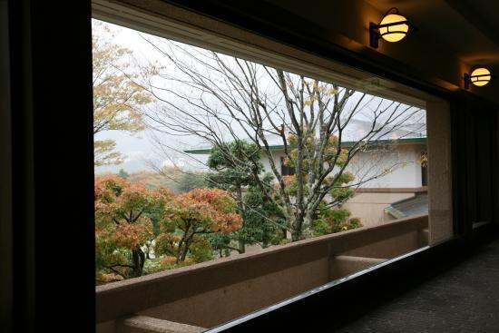 Hotel Harvest Hakone: 東急ハーベストクラブ箱根明神平