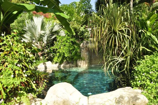 Saint Michael Parish, Barbados: Lagoon Pool Waterfall