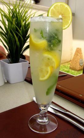 Addo, Sydafrika: Lime & Mint Mojito