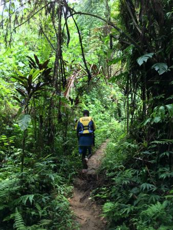 Moyyan House by the Sea: Millenium Cave trekking through the rainforest with guide