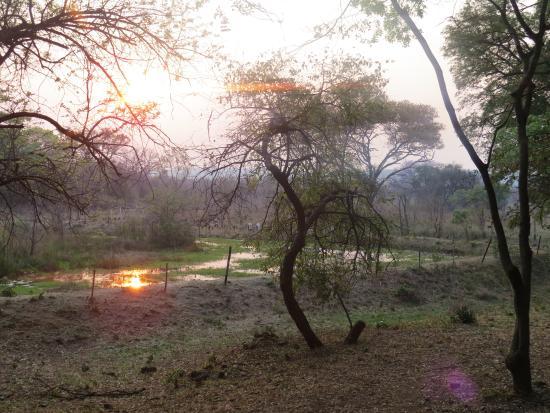 Kadoma, Зимбабве: sunset...