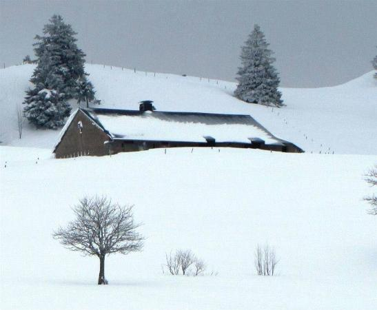 Vaud, Suiza: photo1.jpg