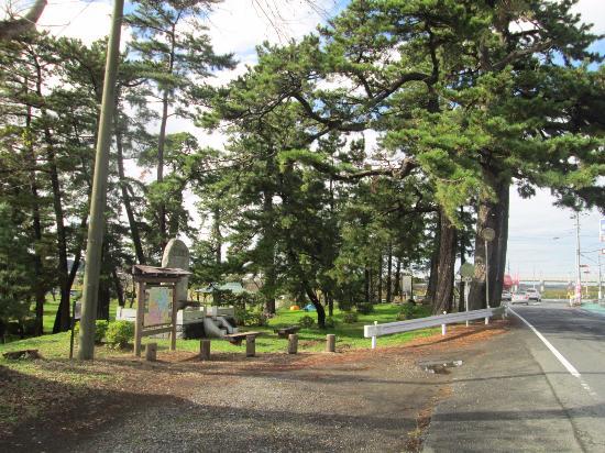 Jinbei Park