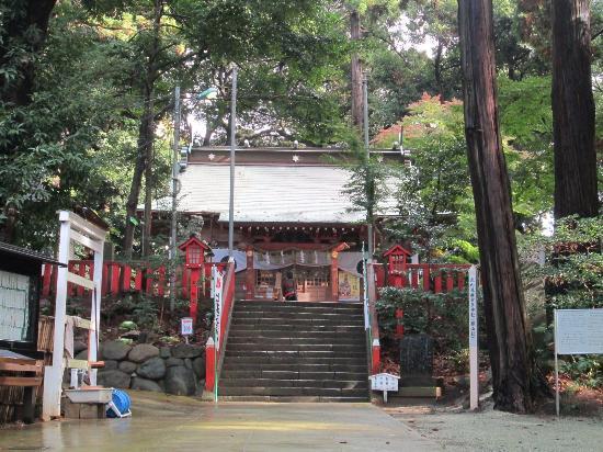 Makata Shrine : 拝殿の階段