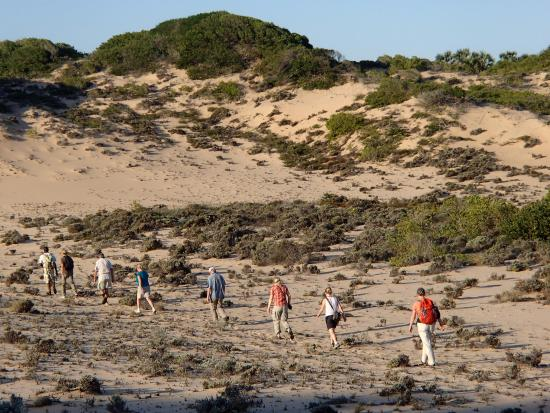 Dunes de Dovela eco-lodge: walk to through the dunes