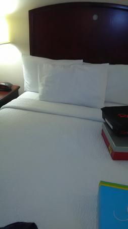 Fairfield Inn & Suites by Marriott Atlanta Perimeter Center: Small hold in curtain