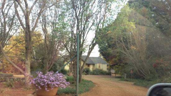 African Silhouette Guesthouse: Driveway entrance