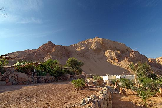 The Bedouin Moon Hotel: View from the room