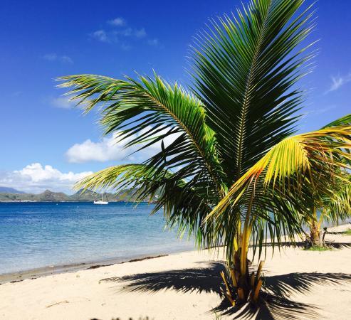 Oualie Beach: photo2.jpg