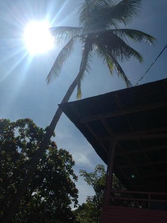Playa Blanca, Panamá: Sol y palmeras