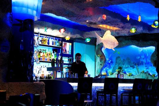 Houston Downtown Aquarium Restaurant Reviews Adalsong
