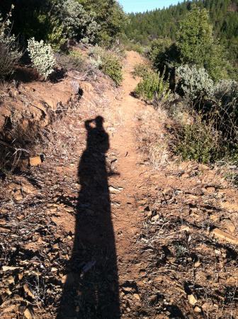 Arnold, CA: San Domingo Trail