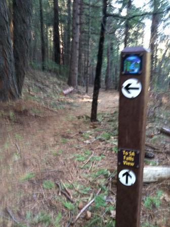 Arnold Rim Trail: Trail Market