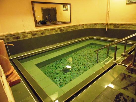 Medical and Spa Resort Merkur: Бассейн с концентрированной термальной водой в Римском изворе