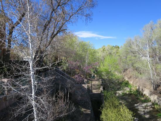 Big Ditch Park : Spring Afternoon