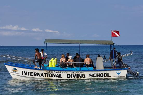 ‪International Diving School‬