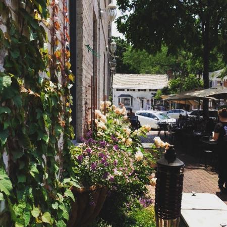 Northport, estado de Nueva York: Patio garden
