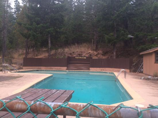 Patrick Creek Lodge and Historical Inn: Pool