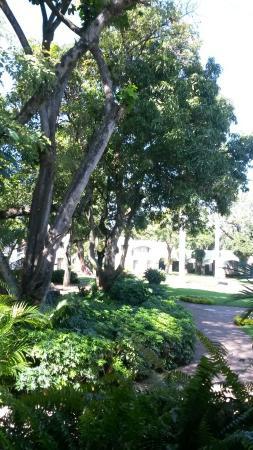 Hotel Hacienda Cocoyoc: TA_IMG_20151115_110905_large.jpg