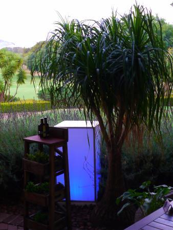 Blu Saffron: Pleasant ambiance