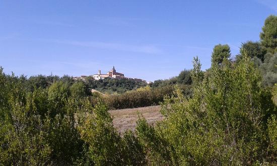 Veduta di Monte San Vito