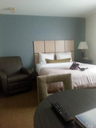 Candlewood Suites Baltimore-Linthicum: Room with King bed and recliner