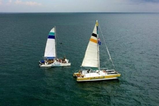 Reef Roamer Snorkel: Two Boats
