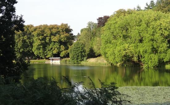 Parc Rousseau : Парковый пруд