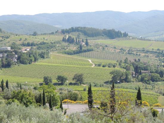 Villa La Pergola: view
