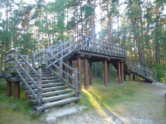 Rezerwat przyrody Kręgi Kamienne照片
