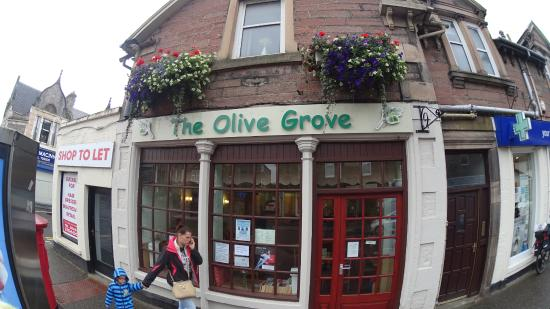 The Olive Grove: the place