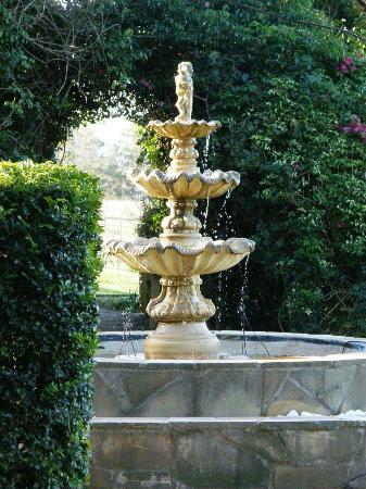 Gemelli Estate : Garden