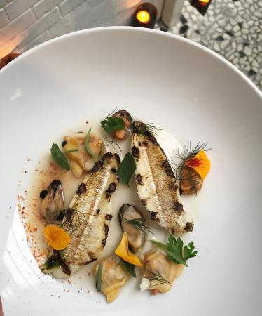 Waverley, ออสเตรเลีย: Red spot whiting / mussels and surf clams