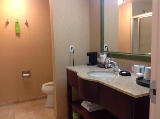 Hampton Inn Tremonton: nice washroom