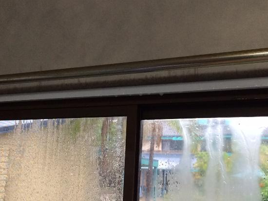 Port Macquarie Breakwall Holiday Park: Water leaks top and bottom of windows