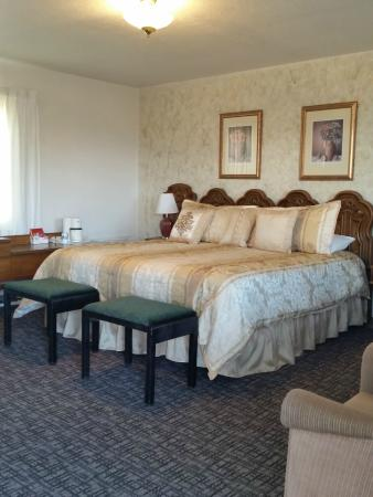 Condon Motel: Our 1 King room