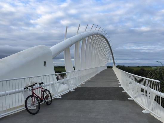 New Plymouth, Yeni Zelanda: Te Rewa Rewa Bridge