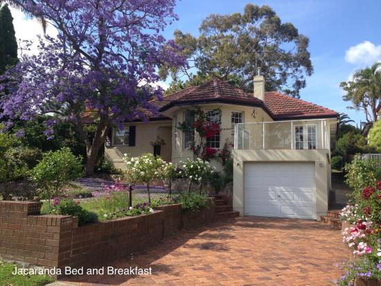 jacaranda bed and breakfast updated 2018 b b reviews price comparison and 36 photos balgowlah. Black Bedroom Furniture Sets. Home Design Ideas