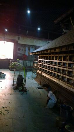 Kailasagiri Temple