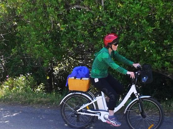 Waiheke-eiland, Nieuw-Zeeland: These bikes are so comfortable and easy to ride.
