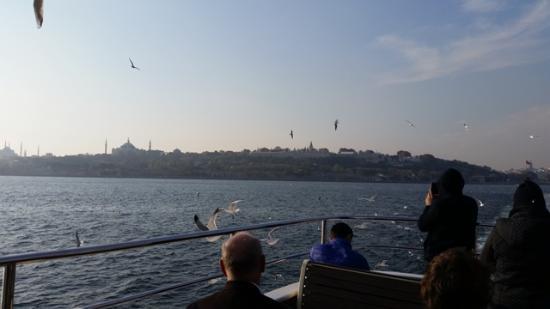 Rose Garden Suites Istanbul: Ferry ride