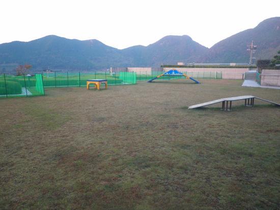 Dog Resort Kagoshima CoCo Fore Imuta: 屋外ドッグラン