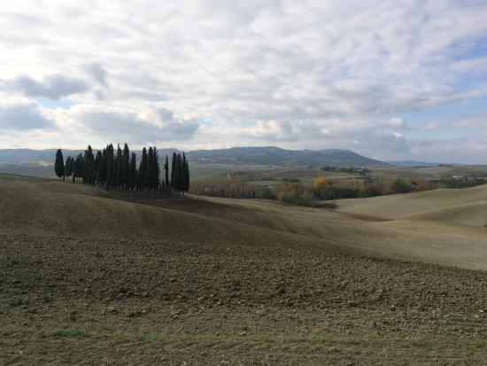 San Giovanni d'Asso, Włochy: Panorama