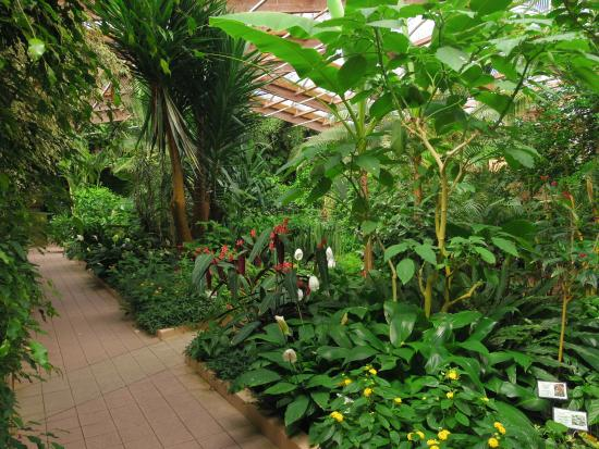V g tation du jardin fotograf a de jardin aux papillons for Villas de jardin seychelles tripadvisor